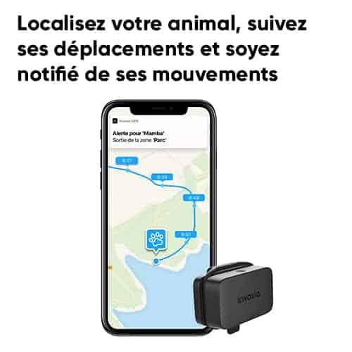 Pet tracker invoxia 4