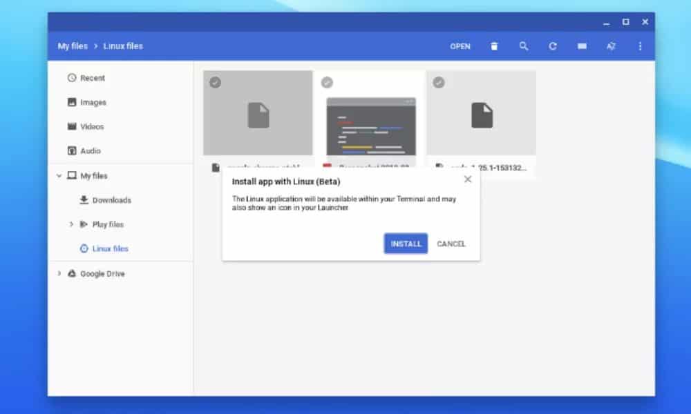 Chrome OS Debian 3