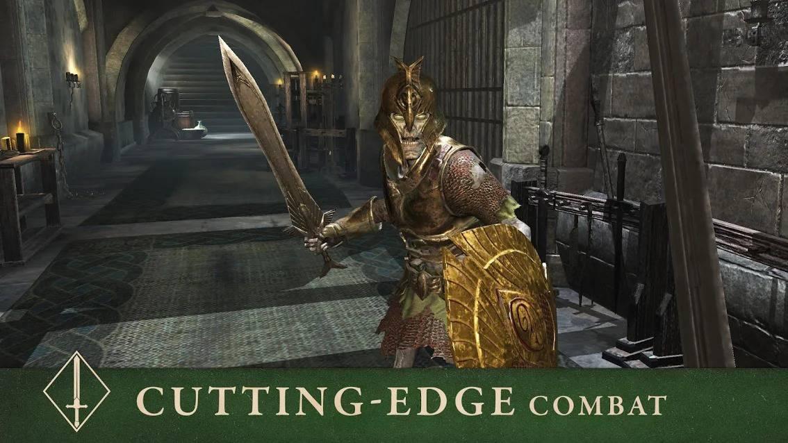 Elder Scrolls Blades 1