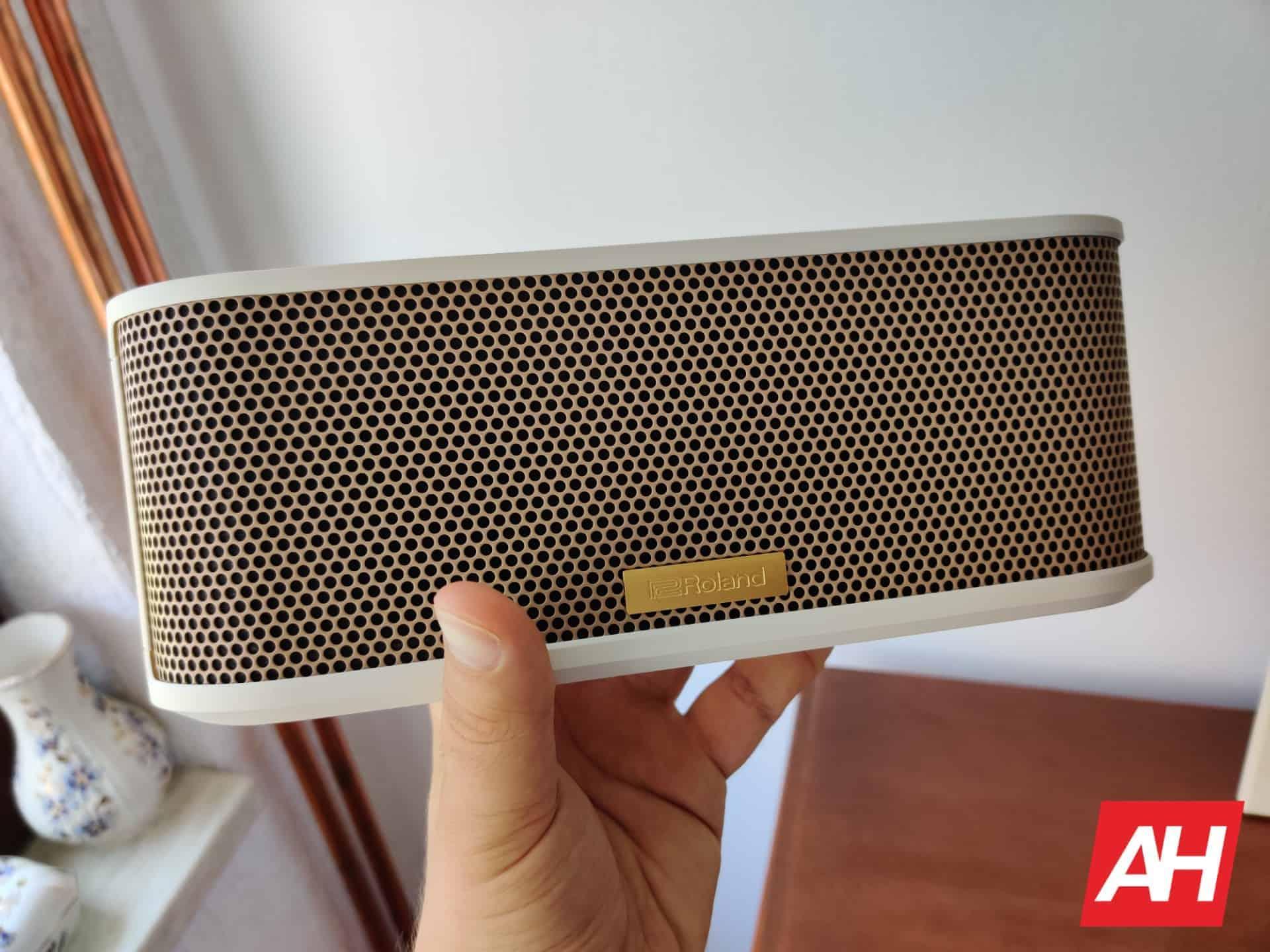 Roland BTM 1 Bluetooh speaker 31