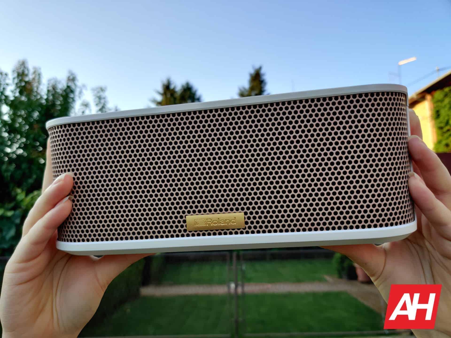 Roland BTM 1 Bluetooh speaker 32