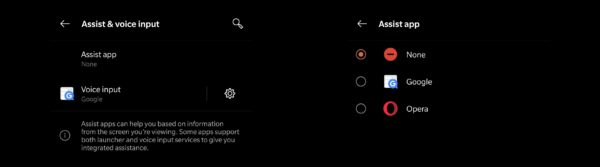 OxygenOS 10 disable Google Assistant gesture 1
