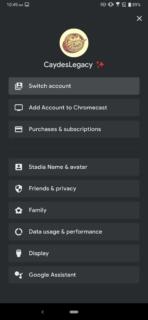 Stadia data settings (1)