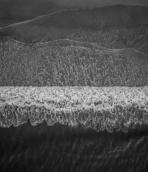 Sony Xperia 1 II wallpaper 3