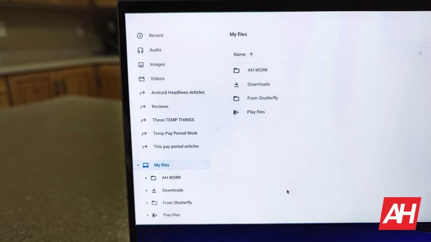 Chromebooks Chrome OS Files App DG AH 2020