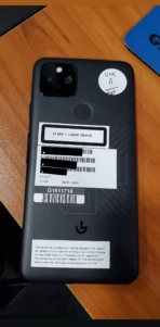 Google Pixel 5 real-life image leak 2
