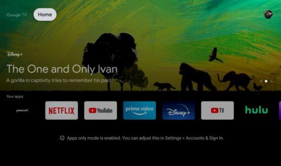 Google TV UI New Chromecast Apps Only Mode