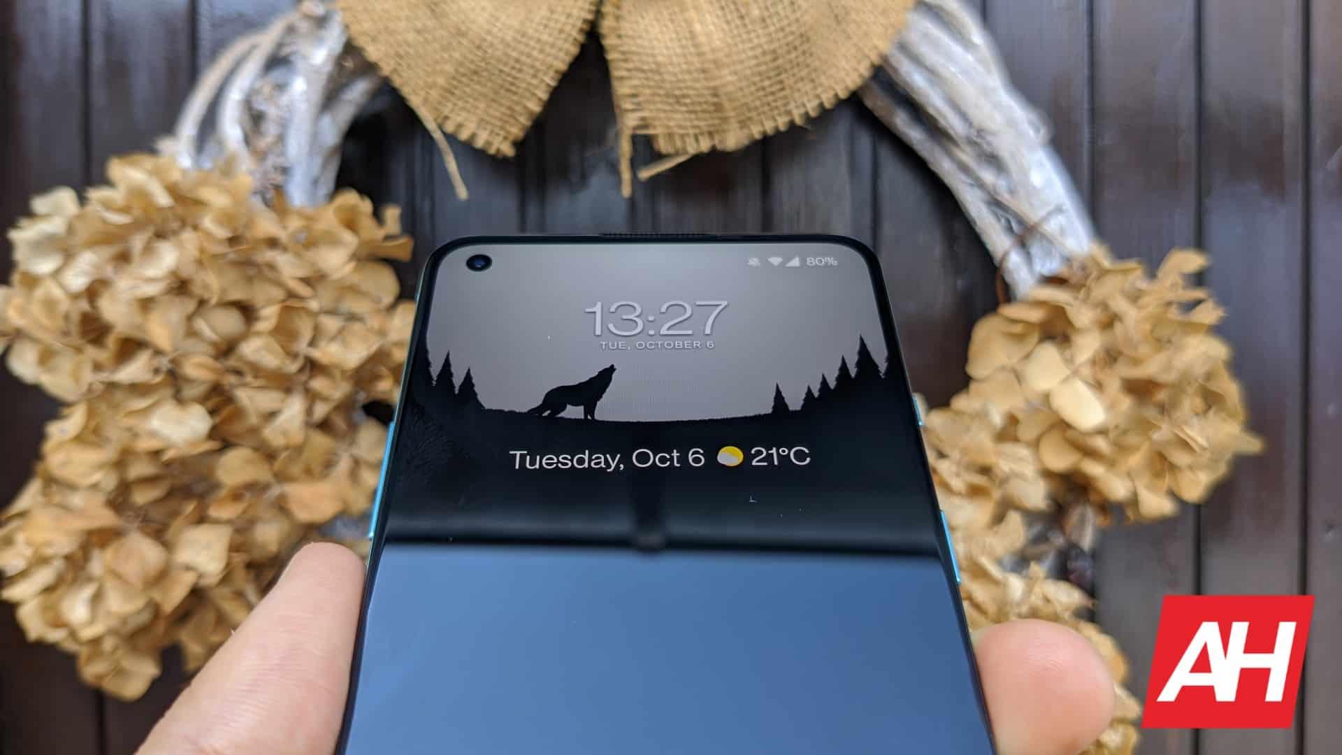 AH OnePlus 8T image 103