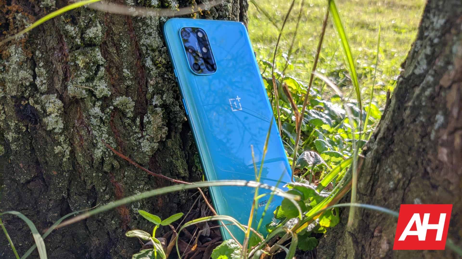 AH OnePlus 8T image 911