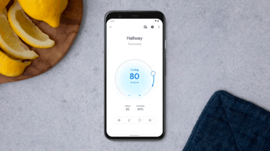 Nest Thermostat Google Home App Integration
