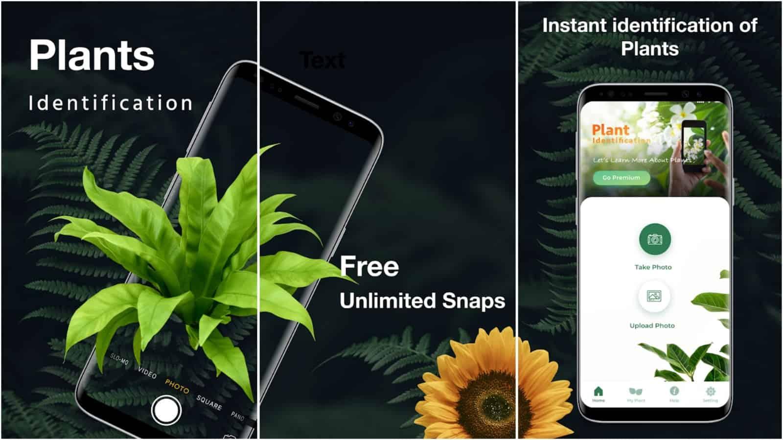 LeafSnap app grid image