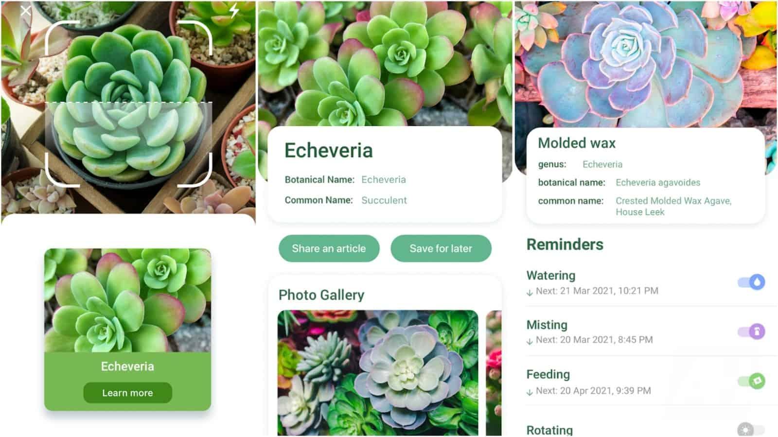 NatureID app grid image