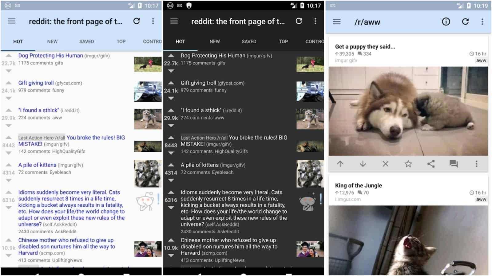 rif é imagem de grade de aplicativo divertido