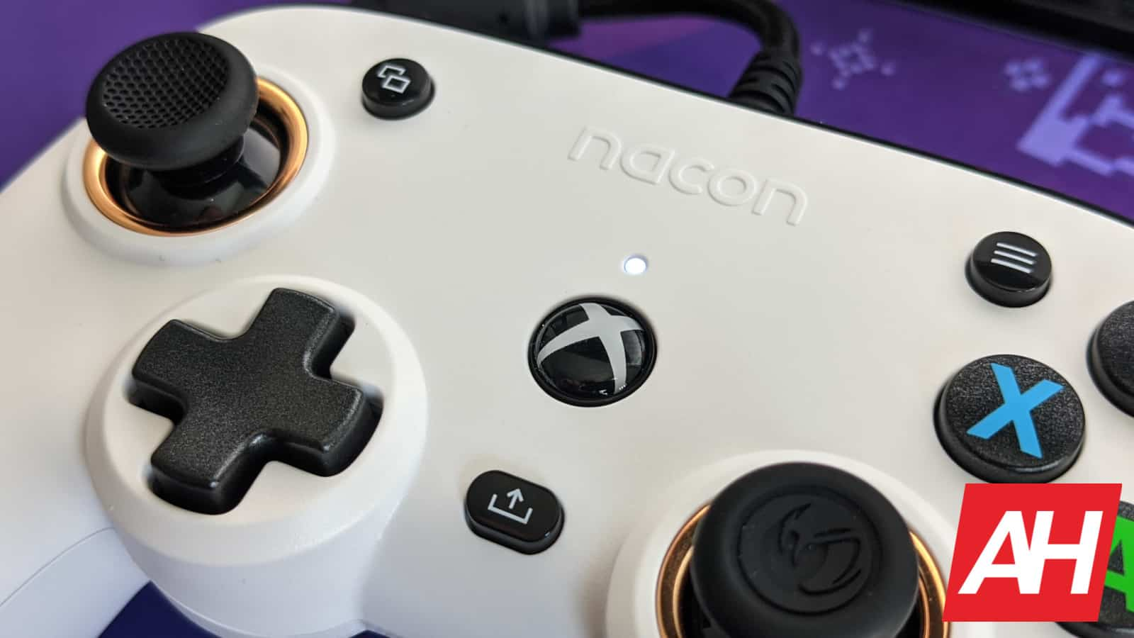 RIG Pro Compact Review 5